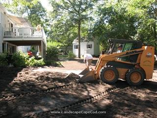 Stump Removal and Yard Renovation